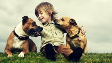 Σκύλος: σύμμαχος ζωής, υγείας και ευτυχίας για το παιδί